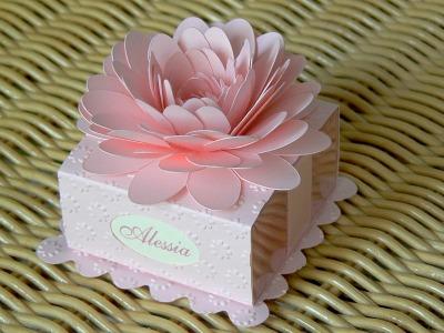 Scatolina cake rosa e celeste mod A